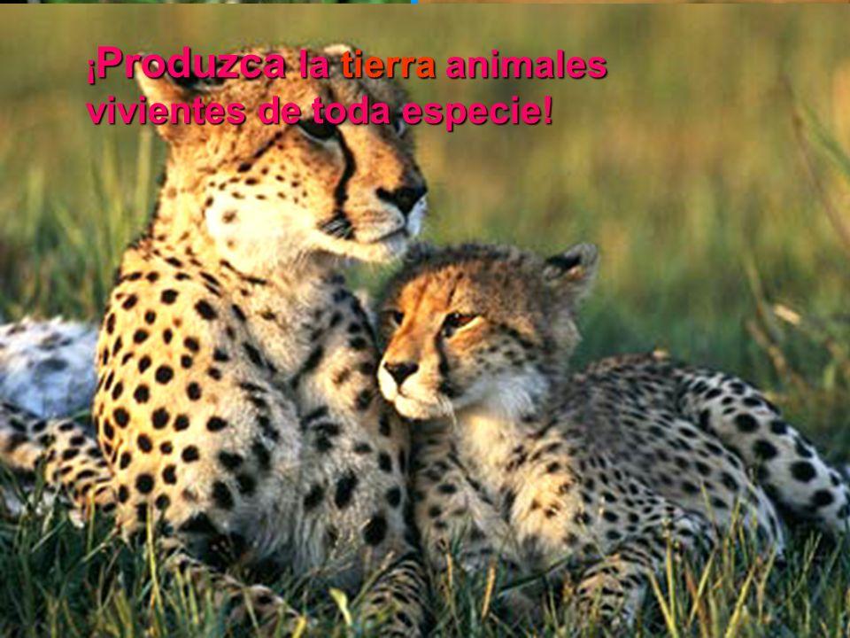¡ Produzca la tierra animales vivientes de toda especie!