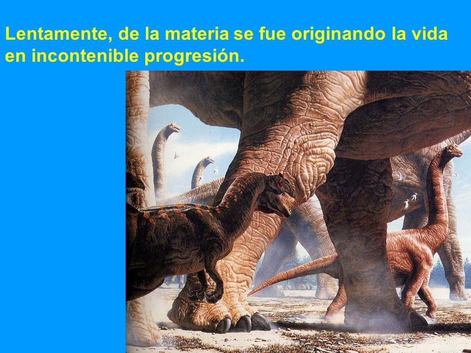 Lentamente, de la materia se fue originando la vida en incontenible progresión.