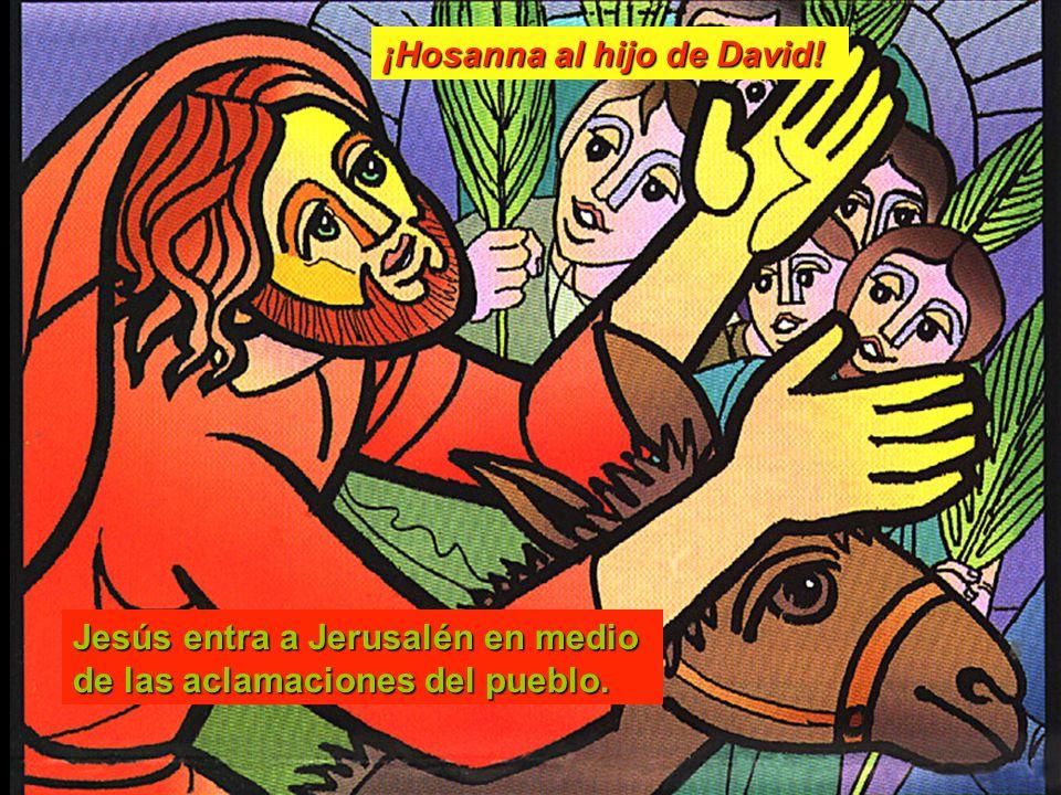 Jesús entra a Jerusalén en medio de las aclamaciones del pueblo. ¡Hosanna al hijo de David!
