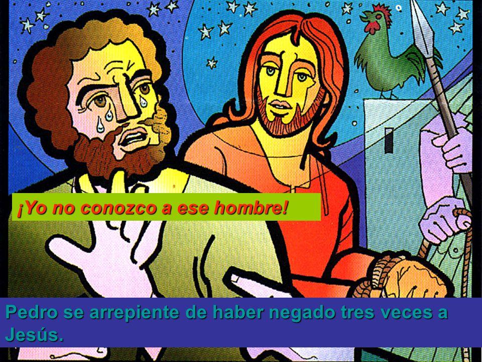 Pedro se arrepiente de haber negado tres veces a Jesús. ¡Yo no conozco a ese hombre!