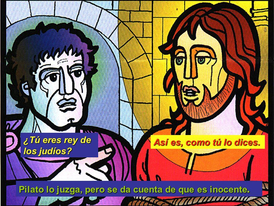 Pilato lo juzga, pero se da cuenta de que es inocente. Así es, como tú lo dices. ¿Tú eres rey de los judíos?