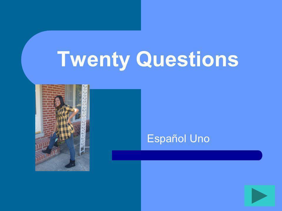 Twenty Questions Español Uno