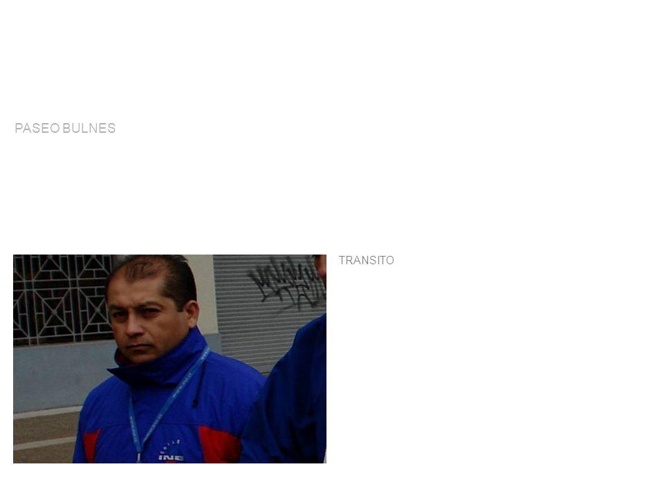 TRANSITO PASEO BULNES