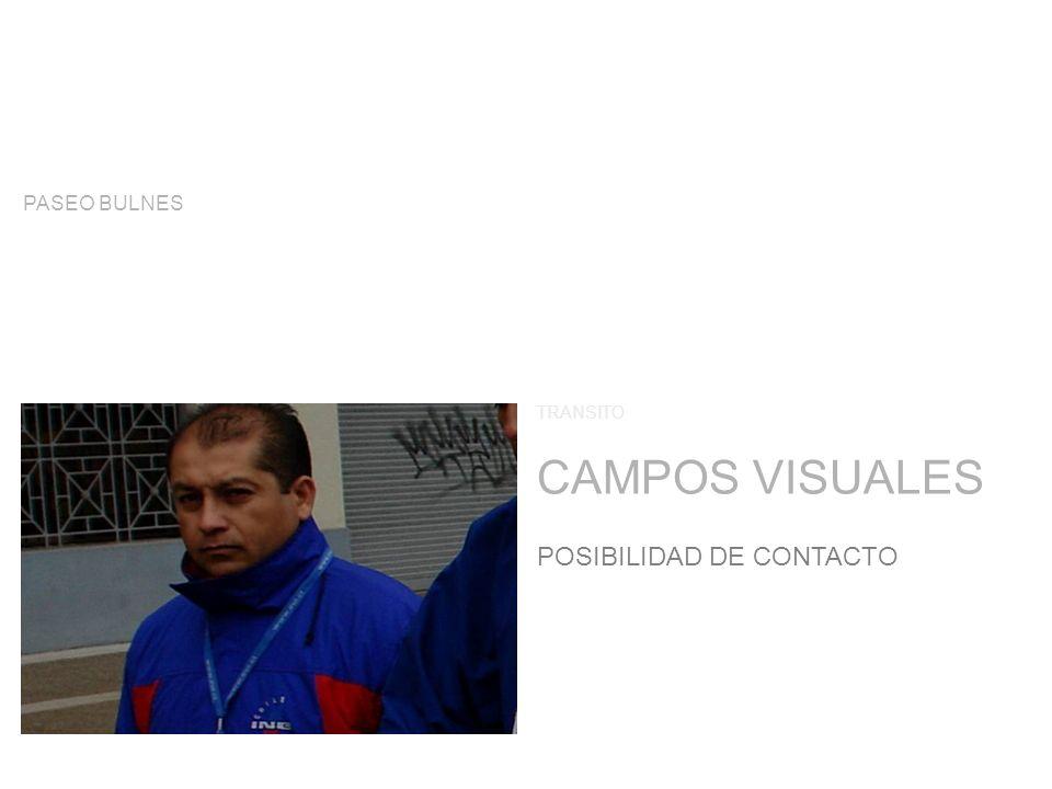 CAMPOS VISUALES TRANSITO POSIBILIDAD DE CONTACTO PASEO BULNES