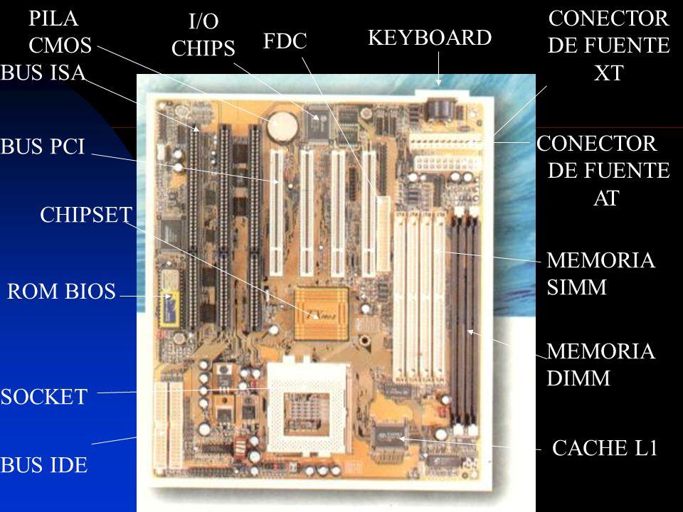 KEYBOARD CHIPSET ROM BIOS SOCKET BUS ISA BUS PCI BUS IDE CONECTOR DE FUENTE AT MEMORIA SIMM MEMORIA DIMM CONECTOR DE FUENTE XT CACHE L1 PILA CMOS FDC