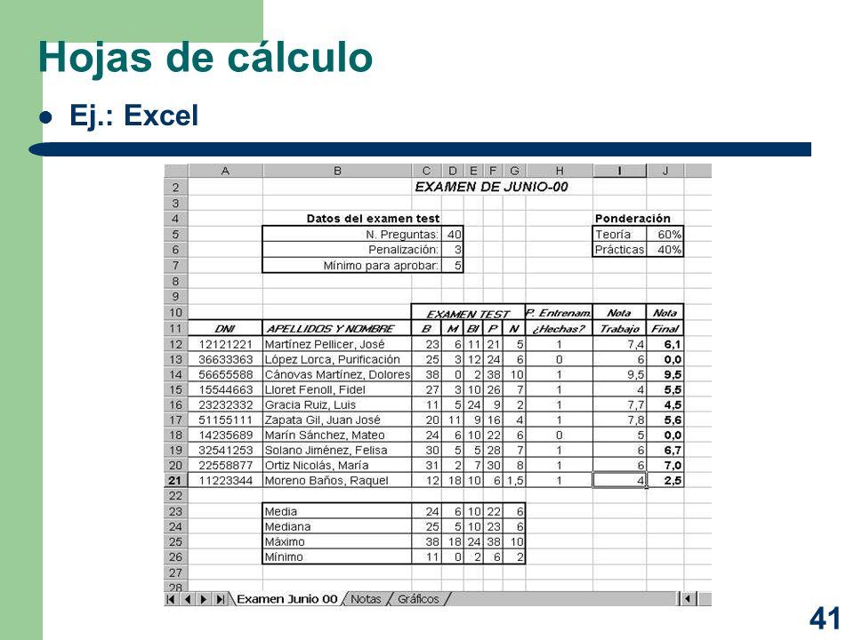 41 Hojas de cálculo Ej.: Excel