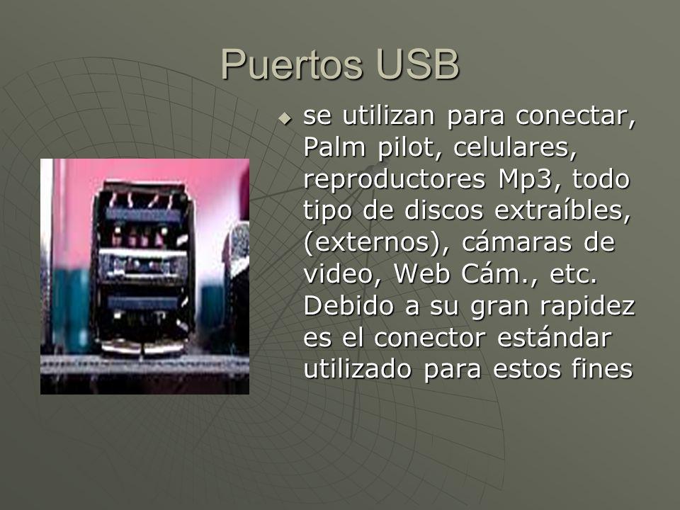 Puertos USB se utilizan para conectar, Palm pilot, celulares, reproductores Mp3, todo tipo de discos extraíbles, (externos), cámaras de video, Web Cám