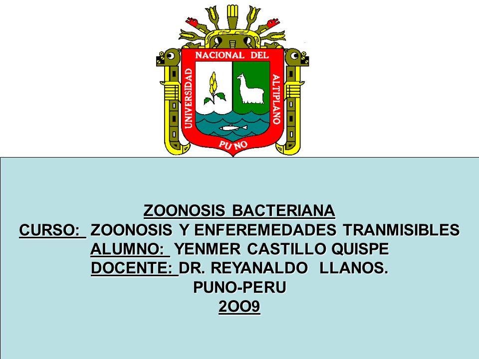 ZOONOSIS BACTERIANA CURSO: ZOONOSIS Y ENFEREMEDADES TRANMISIBLES ALUMNO: YENMER CASTILLO QUISPE DOCENTE: DR. REYANALDO LLANOS. PUNO-PERU2OO9