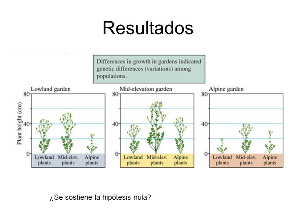 Resultados ¿Se sostiene la hipótesis nula?