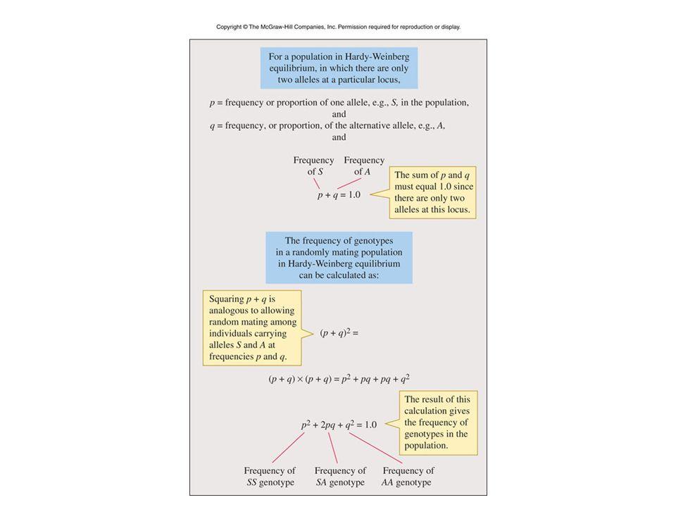 Figure 04_09