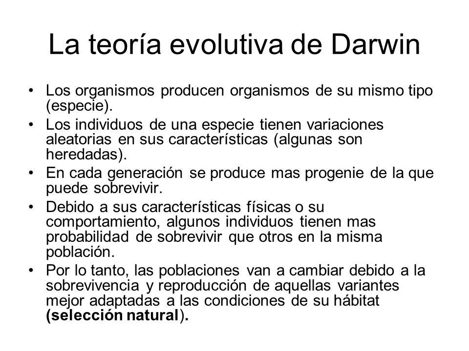 La teoría evolutiva de Darwin Los organismos producen organismos de su mismo tipo (especie).