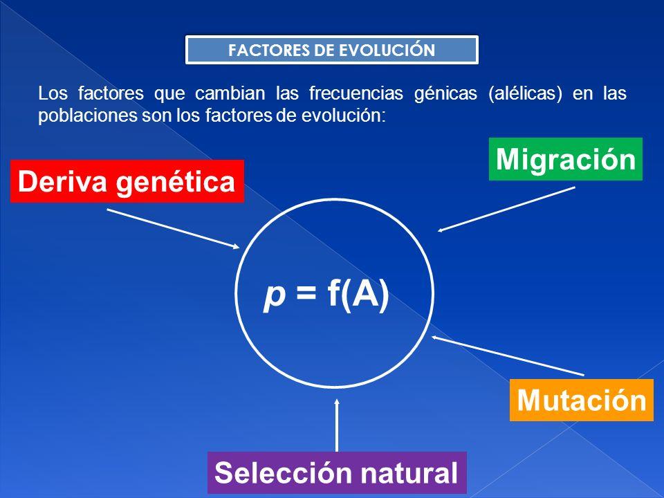 La fuente última de toda variación genética es la mutación.
