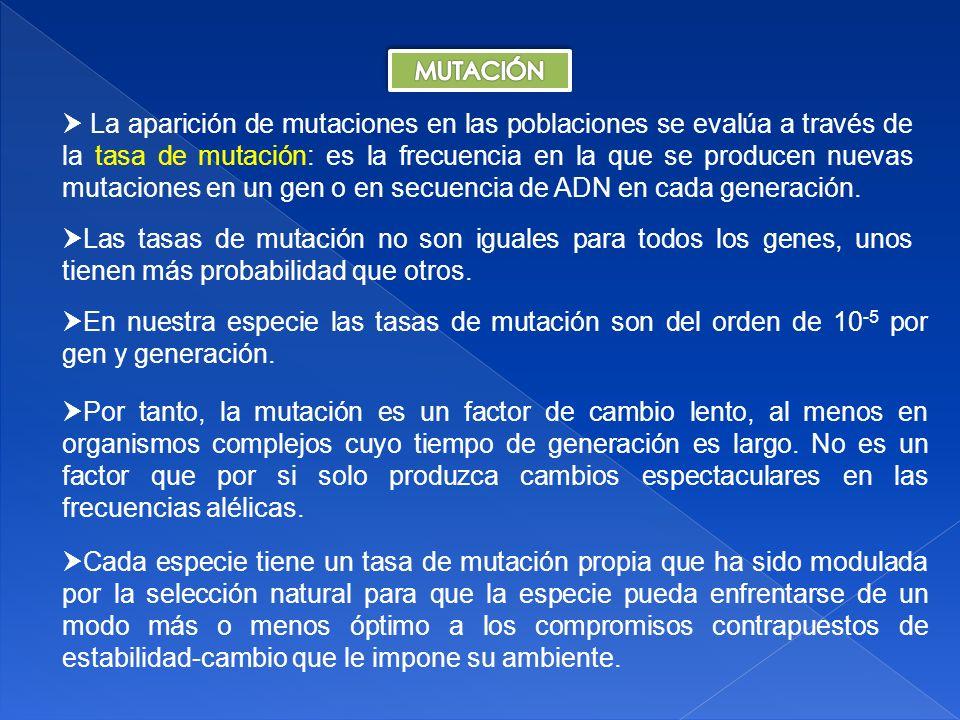 La eficacia biológica es consecuencia de la interacción de dos factores: a) Aquellos que mejoran la supervivencia del individuo.