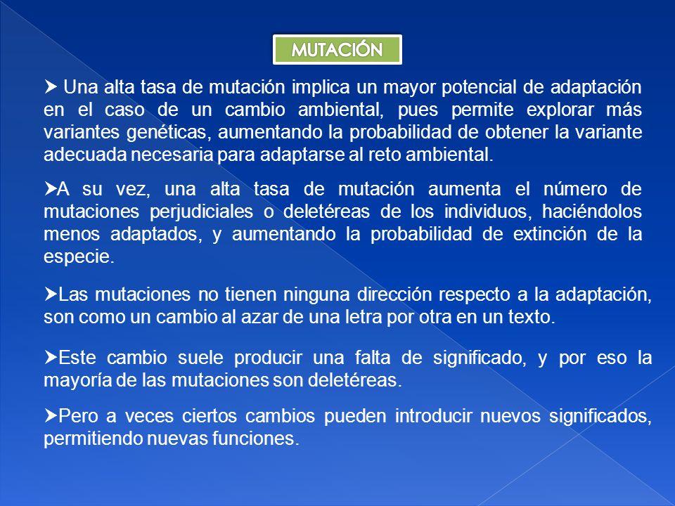 Tema 18: Genética Poblaciones II 49