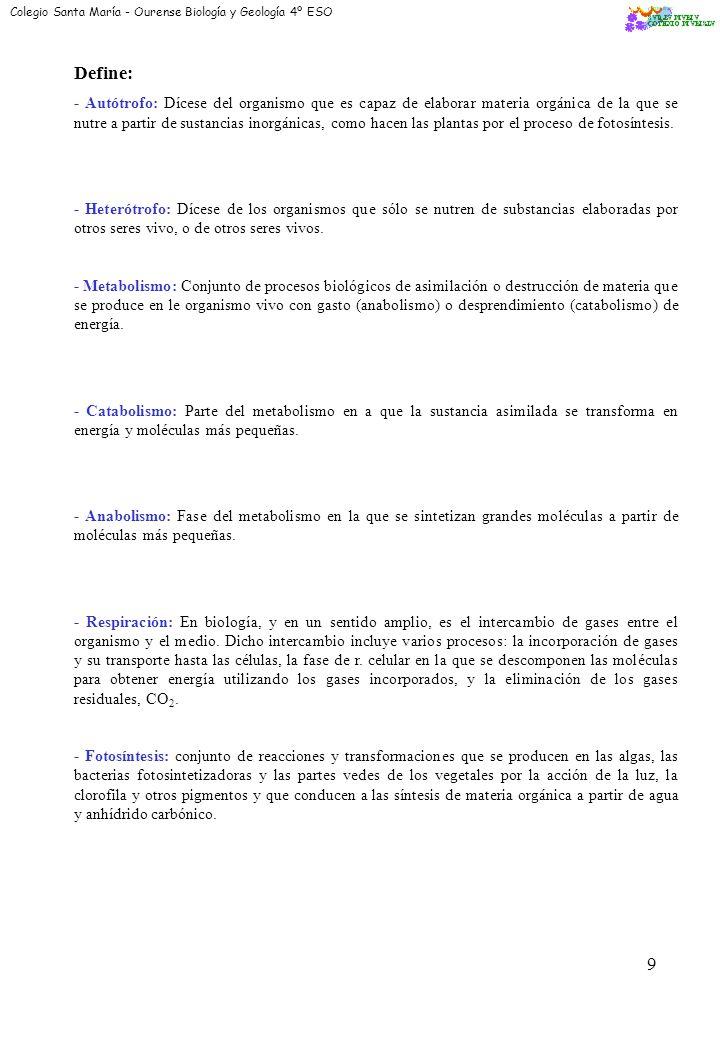 18 EL CARIOTIPO ES HAPLOIDE O DIPLOIDE Diploide ¿POR QUÉ.