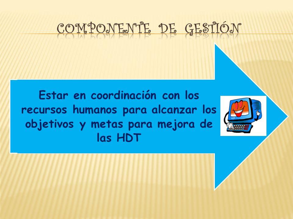 Estar en coordinación con los recursos humanos para alcanzar los objetivos y metas para mejora de las HDT