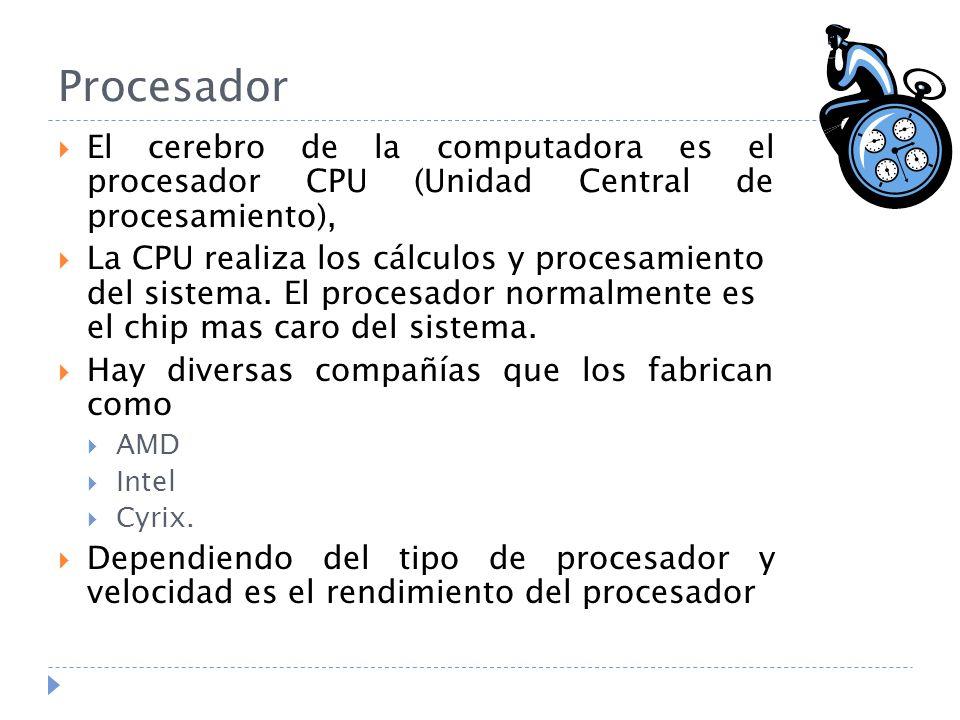 Procesador El cerebro de la computadora es el procesador CPU (Unidad Central de procesamiento), La CPU realiza los cálculos y procesamiento del sistem