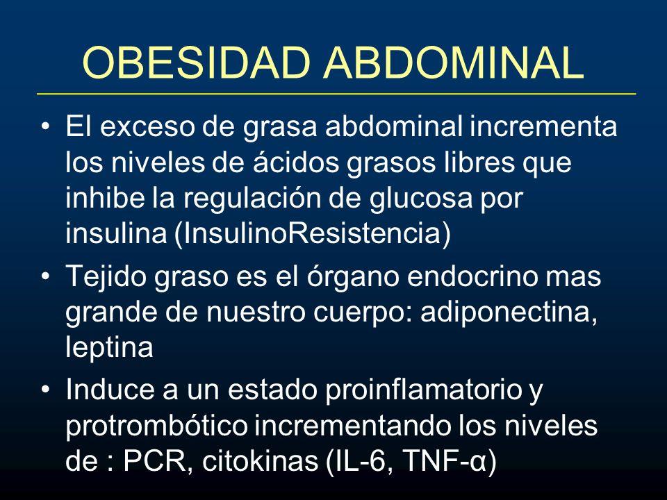 OBESIDAD ABDOMINAL El exceso de grasa abdominal incrementa los niveles de ácidos grasos libres que inhibe la regulación de glucosa por insulina (Insul