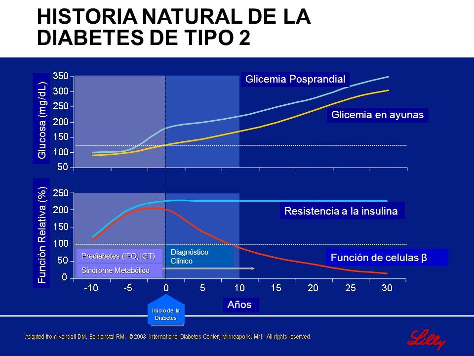 Natural History of Type 2 Diabetes HISTORIA NATURAL DE LA DIABETES DE TIPO 2 Glucosa (mg/dL) Función Relativa (%) Glicemia Posprandial Glicemia en ayu