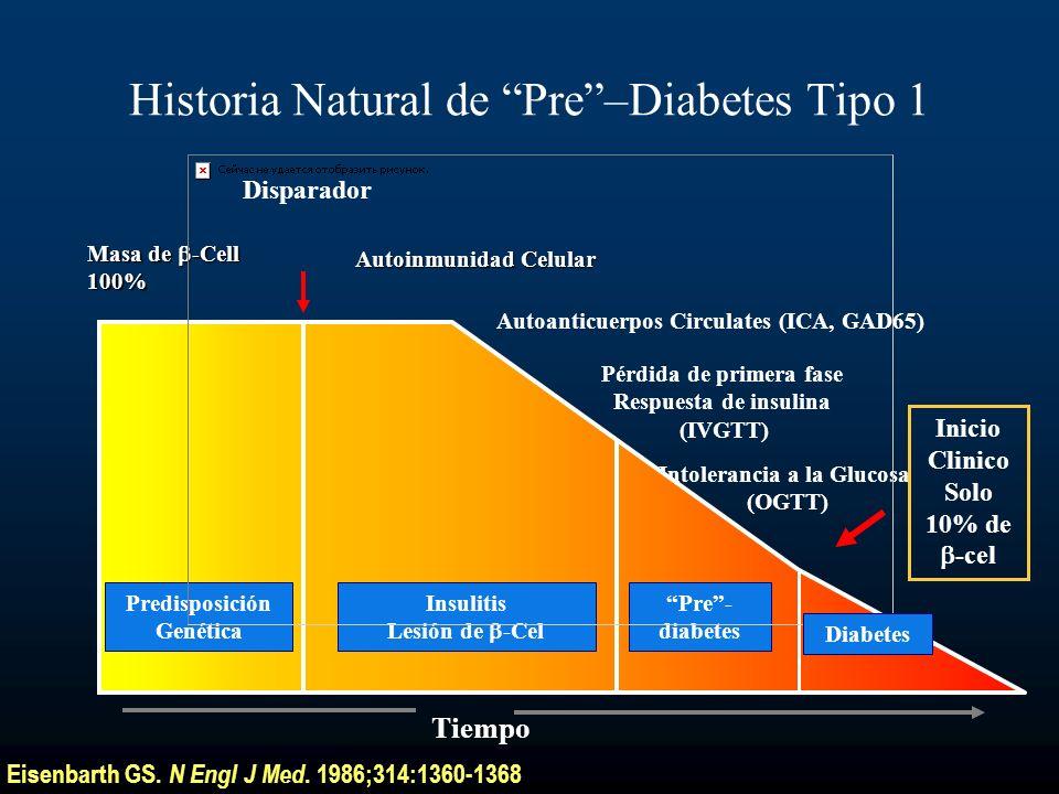 Disparador Autoanticuerpos Circulates (ICA, GAD65) Autoinmunidad Celular Pérdida de primera fase Respuesta de insulina (IVGTT) Intolerancia a la Gluco