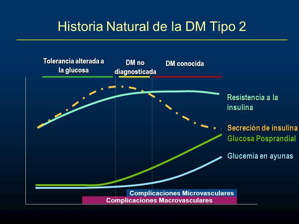Adapted from Ramlo-Halsted BA, Edelman SV. Prim Care. 1999;26:771-789 Historia Natural de la DM Tipo 2 Complicaciones Macrovasculares Complicaciones M