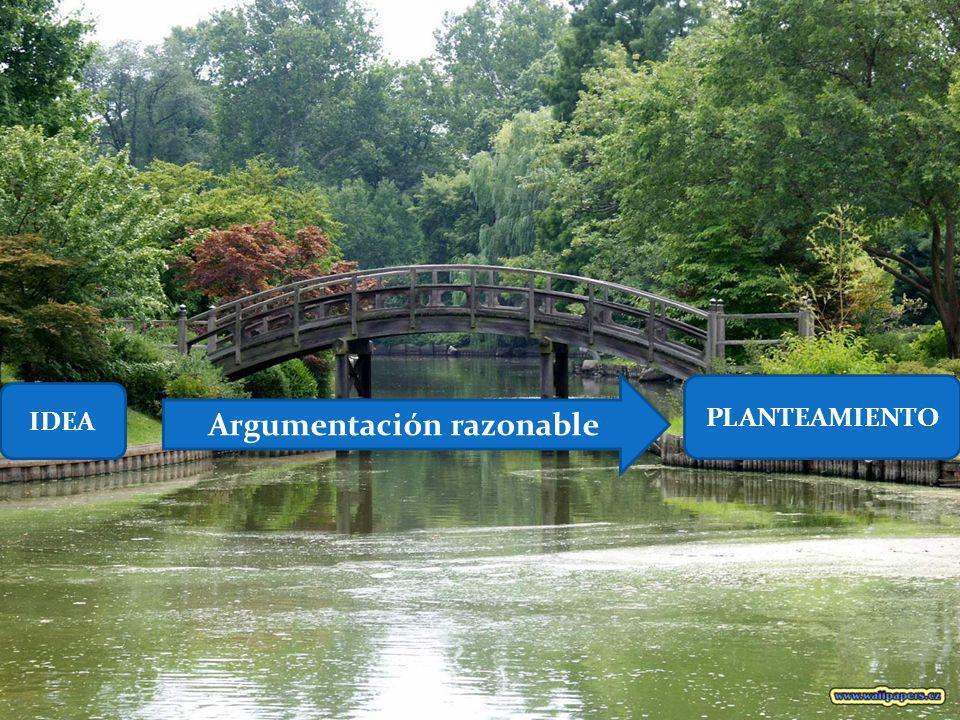 Argumentación razonable IDEA PLANTEAMIENTO