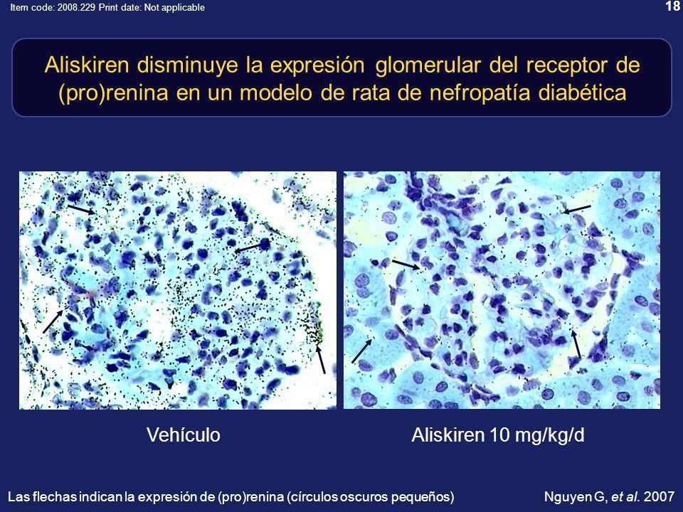 18 Item code: 2008.229 Print date: Not applicable Aliskiren disminuye la expresión glomerular del receptor de (pro)renina en un modelo de rata de nefropatía diabética VehículoAliskiren 10 mg/kg/d Nguyen G, et al.