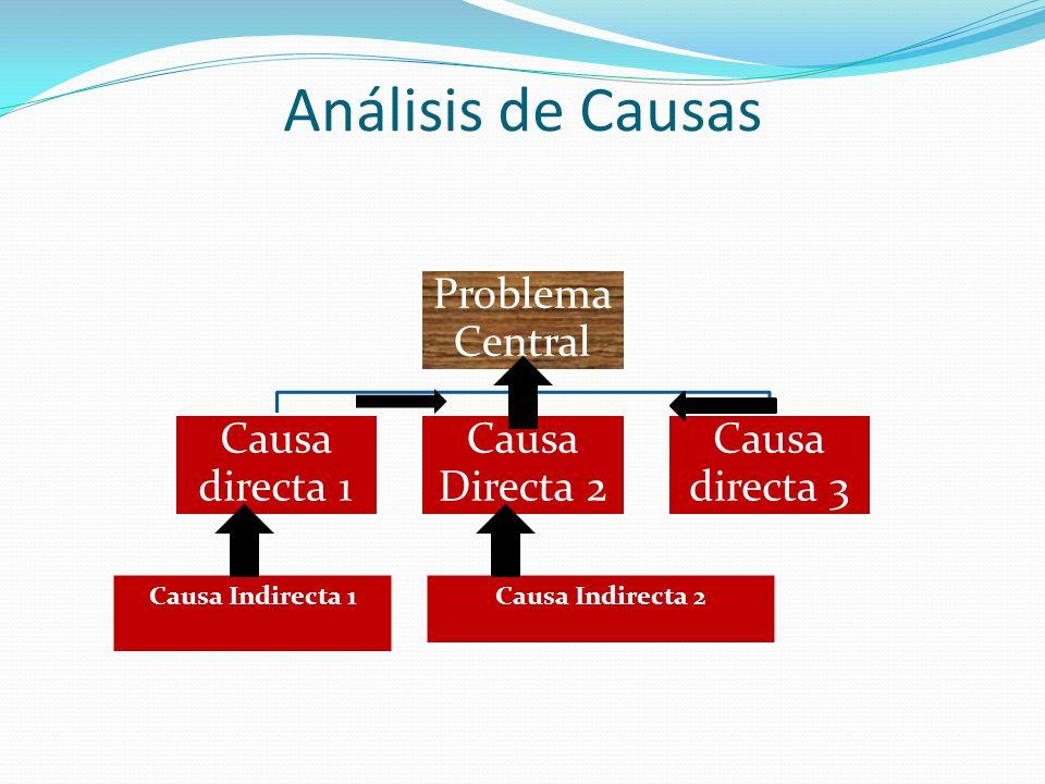 Problema Central Causa directa 1 Causa Directa 2 Causa directa 3 Causa Indirecta 1 Causa Indirecta 2
