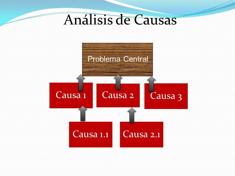 Causa 1 Causa 2 Causa 3 Causa 1.1Causa 2.1 Problema Central Análisis de Causas