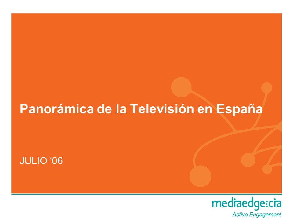 Panorámica de la Televisión en España JULIO 06
