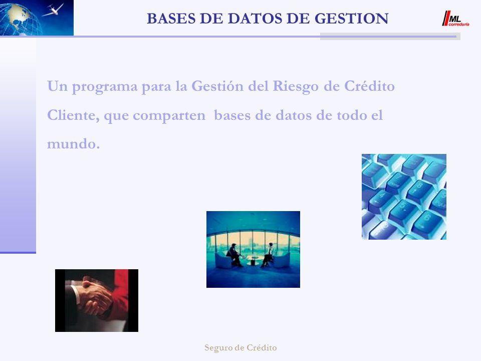 Seguro de Crédito BASES DE DATOS DE GESTION Un programa para la Gestión del Riesgo de Crédito Cliente, que comparten bases de datos de todo el mundo.