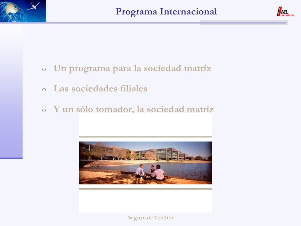Seguro de Crédito Programa Internacional MATRIZ FILIALES Gestión propia cartera de clientes Visualización On-line de la Gestión de Riesgo Cliente de las filiales Gestión propia cartera de clientes