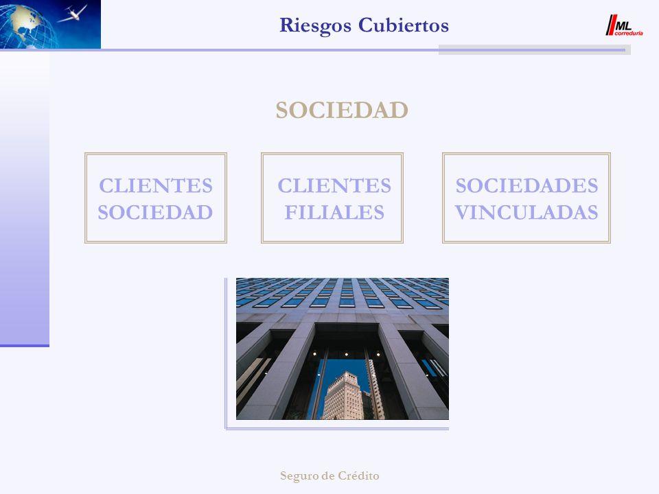ML CORREDURIA Los servicios de un broker especialista en Seguro de Crédito
