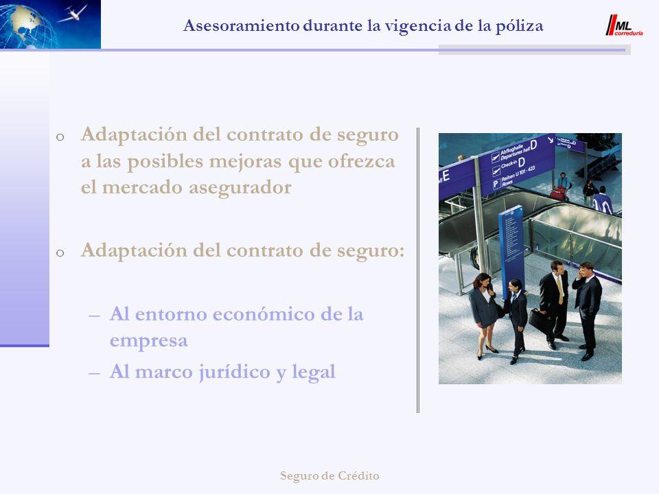 Seguro de Crédito Asesoramiento durante la vigencia de la póliza o Adaptación del contrato de seguro a las posibles mejoras que ofrezca el mercado ase