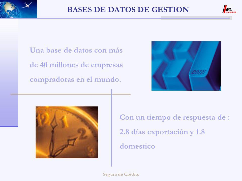 Seguro de Crédito BASES DE DATOS DE GESTION Una base de datos con más de 40 millones de empresas compradoras en el mundo. Con un tiempo de respuesta d