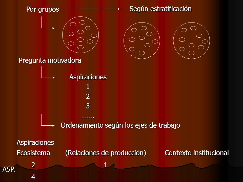 Por grupos Según estratificación Pregunta motivadora Aspiraciones123……. Ordenamiento según los ejes de trabajo Aspiraciones Ecosistema(Relaciones de p