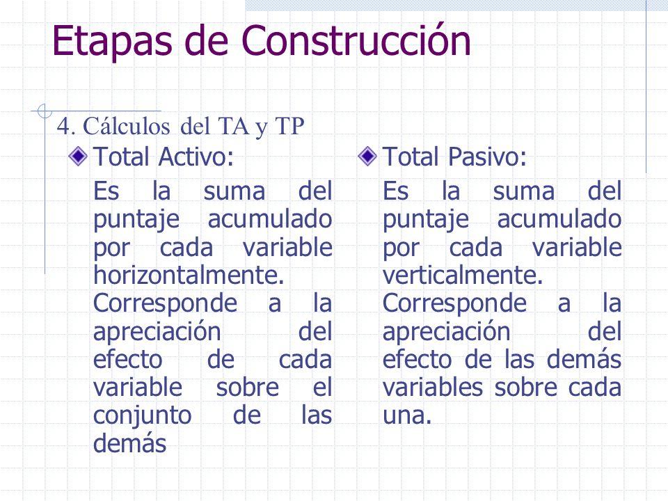 Etapas de Construcción Total Activo: Es la suma del puntaje acumulado por cada variable horizontalmente. Corresponde a la apreciación del efecto de ca