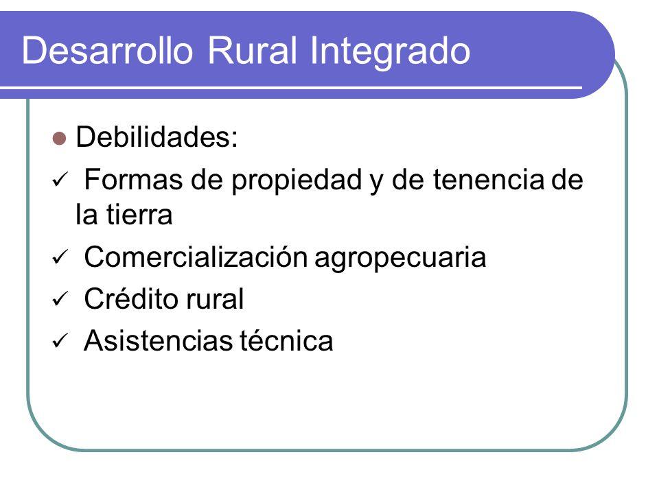 Desarrollo Rural Integrado Debilidades: Formas de propiedad y de tenencia de la tierra Comercialización agropecuaria Crédito rural Asistencias técnica