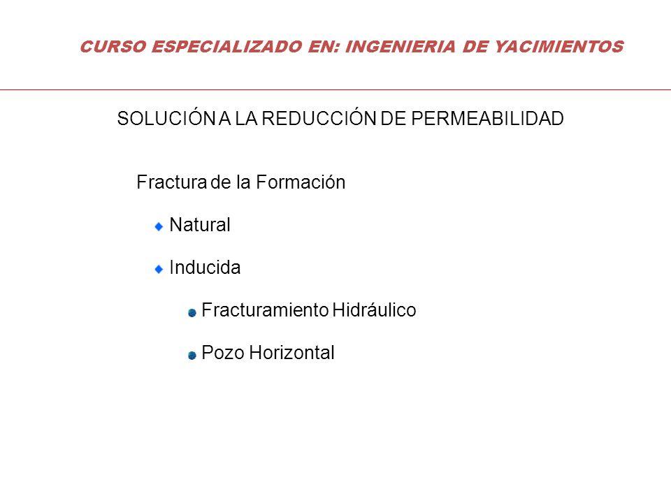Fractura de la Formación Natural Inducida Fracturamiento Hidráulico Pozo Horizontal SOLUCIÓN A LA REDUCCIÓN DE PERMEABILIDAD CURSO ESPECIALIZADO EN: I