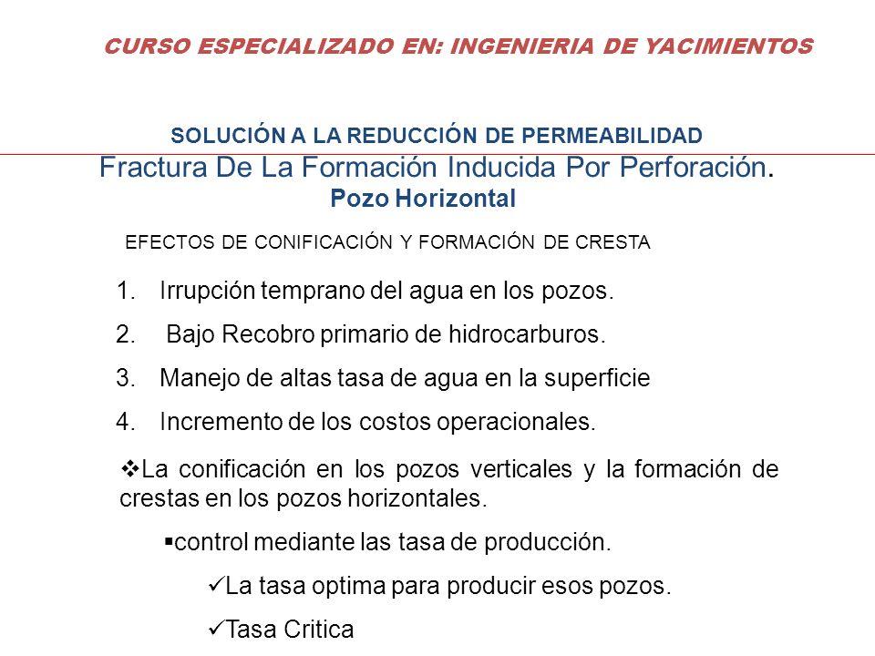 DECLINACION DE PRODUCCION La determinación y predicción de la declinación de producción de un yacimiento o pozo en particular, procedimientos: Método Gráfico, Método Estadísticos (Regresión), Métodos de curvas tipo (Fetkovich) La perdida de Energía de los yacimientos, generalmente se reflejan en declinación de la tasa de producción de los mismos CURSO ESPECIALIZADO EN: INGENIERIA DE YACIMIENTOS