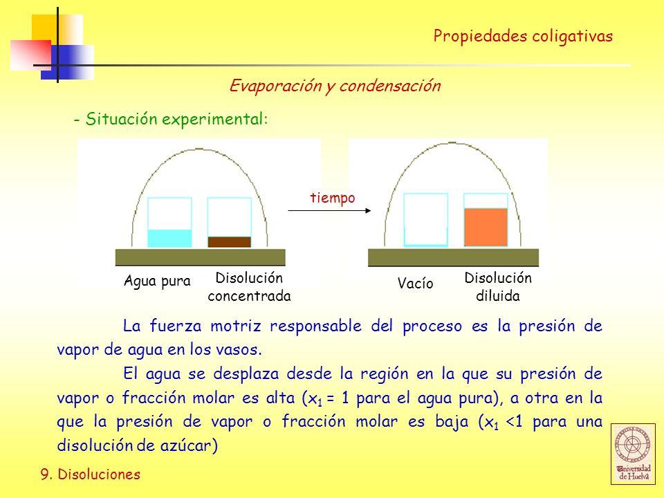 9. Disoluciones Propiedades coligativas Evaporación y condensación - Situación experimental: Agua pura Disolución concentrada Disolución diluida Vacío