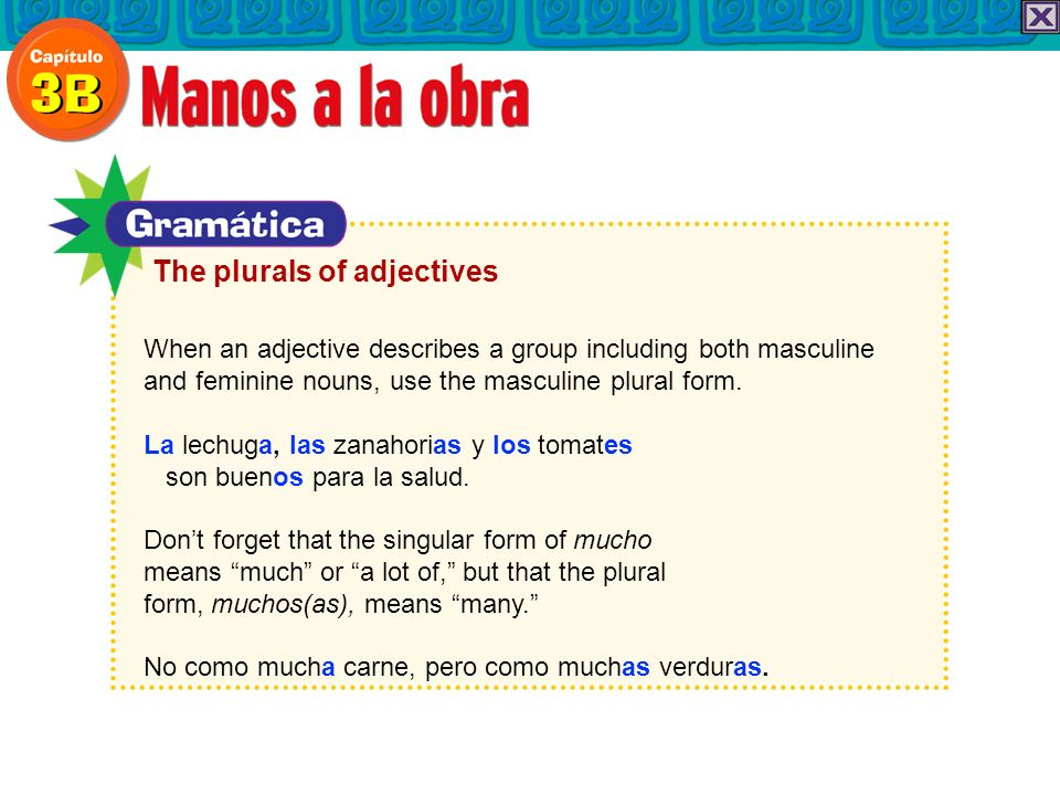 When an adjective describes a group including both masculine and feminine nouns, use the masculine plural form.