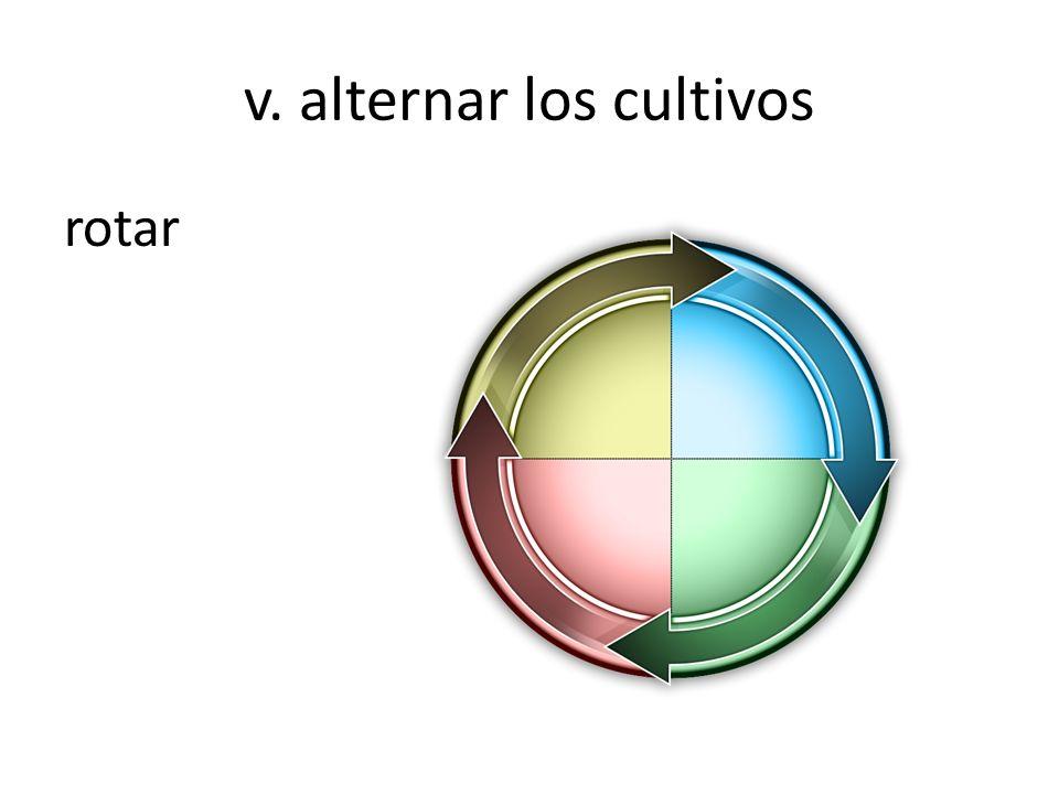 v. alternar los cultivos rotar