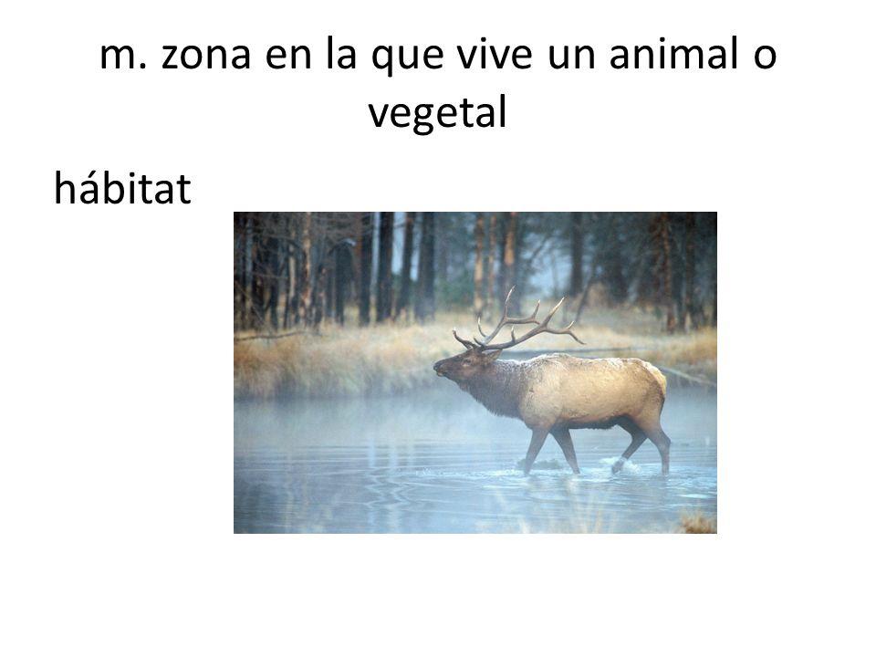 m. zona en la que vive un animal o vegetal hábitat