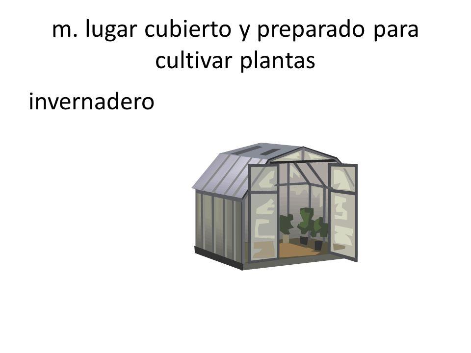 m. lugar cubierto y preparado para cultivar plantas invernadero