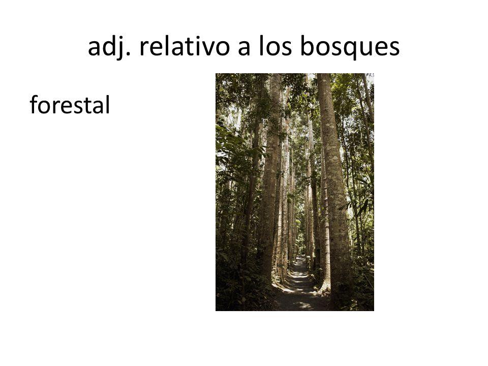 adj. relativo a los bosques forestal