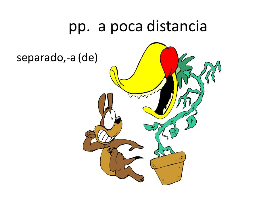 pp. a poca distancia separado,-a (de)