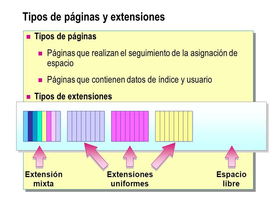 Tipos de páginas y extensiones Extensiones uniformes Espacio libre Extensión mixta Tipos de páginas Páginas que realizan el seguimiento de la asignaci
