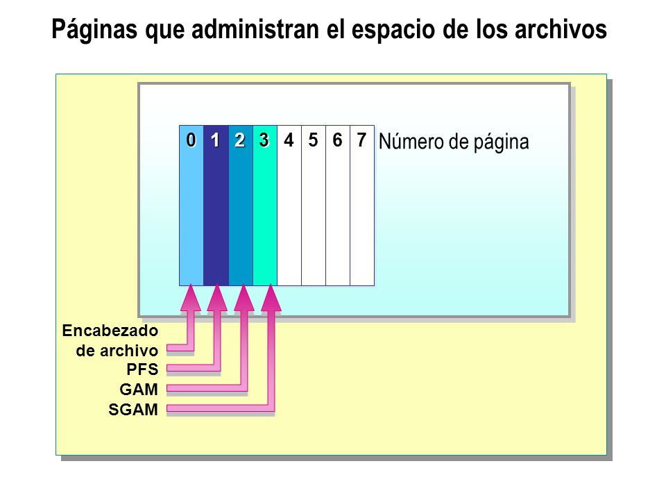 Páginas que administran el espacio de los archivos00112233 4 4 5 5 6 6 7 7 Encabezado de archivo PFS GAM SGAM Número de página