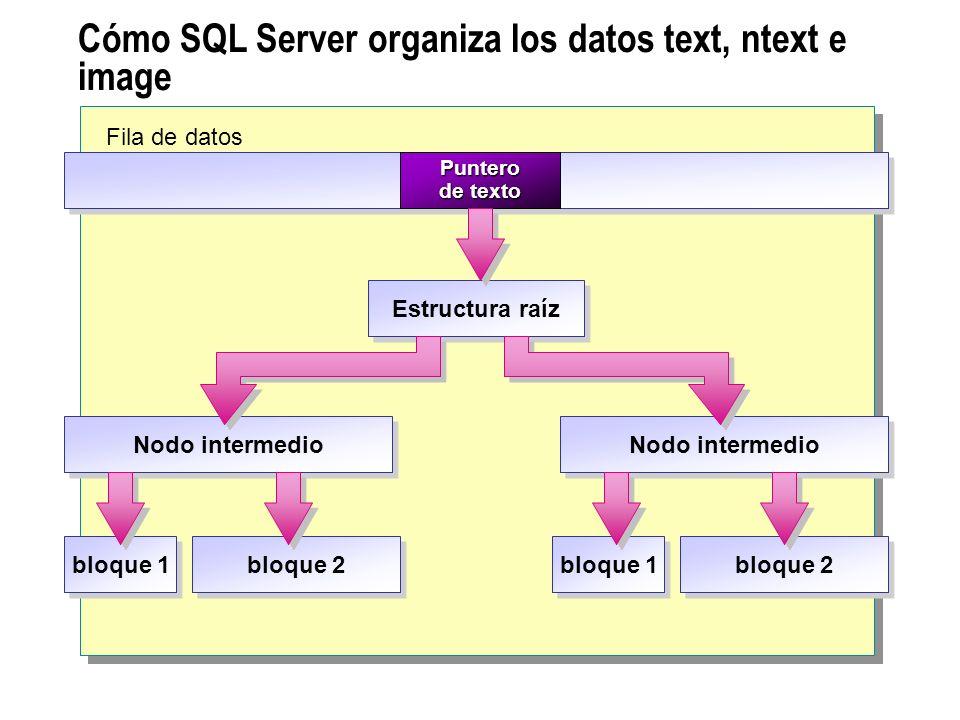 Cómo SQL Server organiza los datos text, ntext e image Fila de datos Puntero de texto Estructura raíz Nodo intermedio bloque 1 bloque 2 bloque 1 bloqu